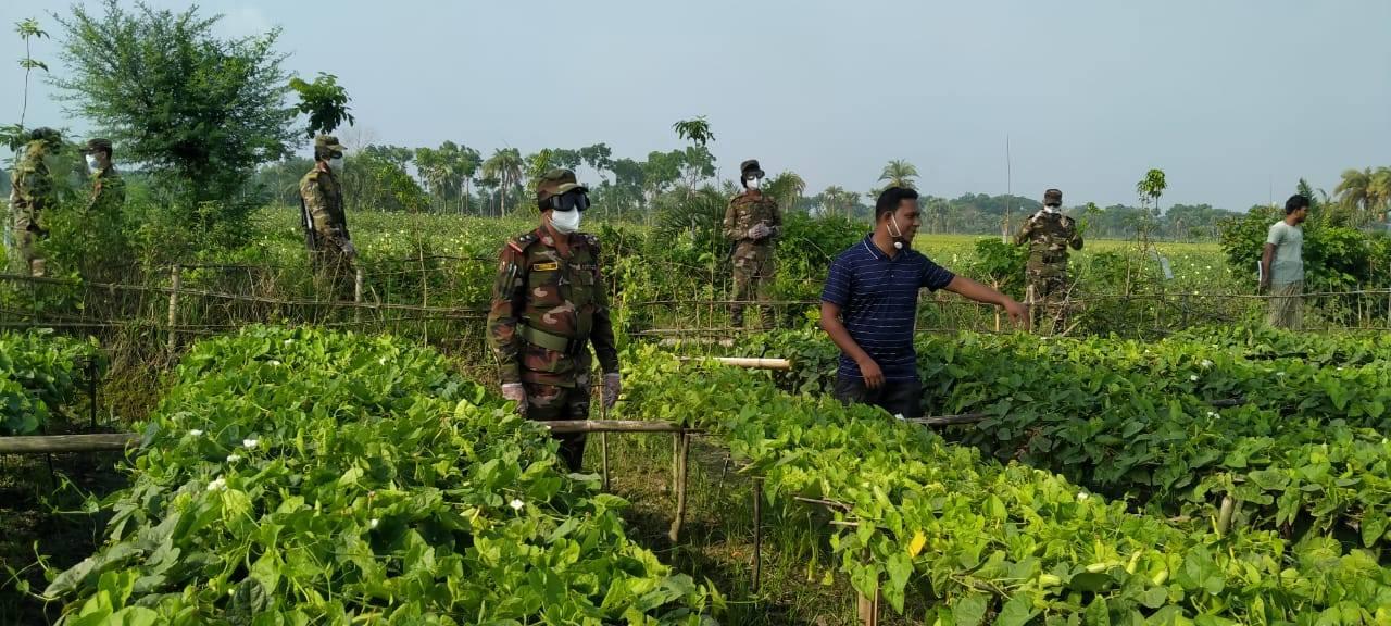 সাতক্ষীরায় সরাসরি কৃষকের কাছ থেকে সবজি কিনল সেনাবাহিনী